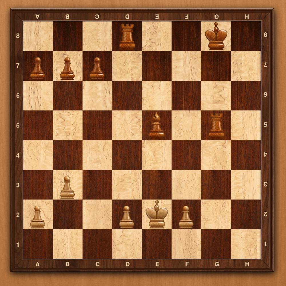 látvány sakk